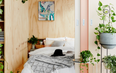 These Are The Best Bedroom Plants to Help You Get a Better Sleep 10 Bedroom Plants These Are The Best Bedroom Plants to Help You Get a Better Sleep These Are The Best Bedroom Plants to Help You Get a Better Sleep 10 240x150