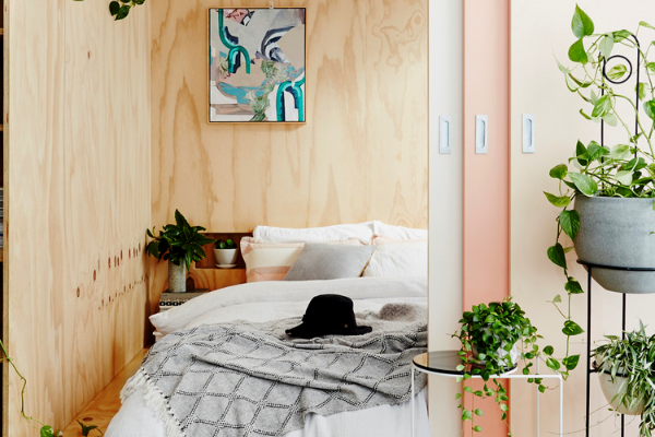 These Are The Best Bedroom Plants to Help You Get a Better Sleep 10 Bedroom Plants These Are The Best Bedroom Plants to Help You Get a Better Sleep These Are The Best Bedroom Plants to Help You Get a Better Sleep 10 600x400