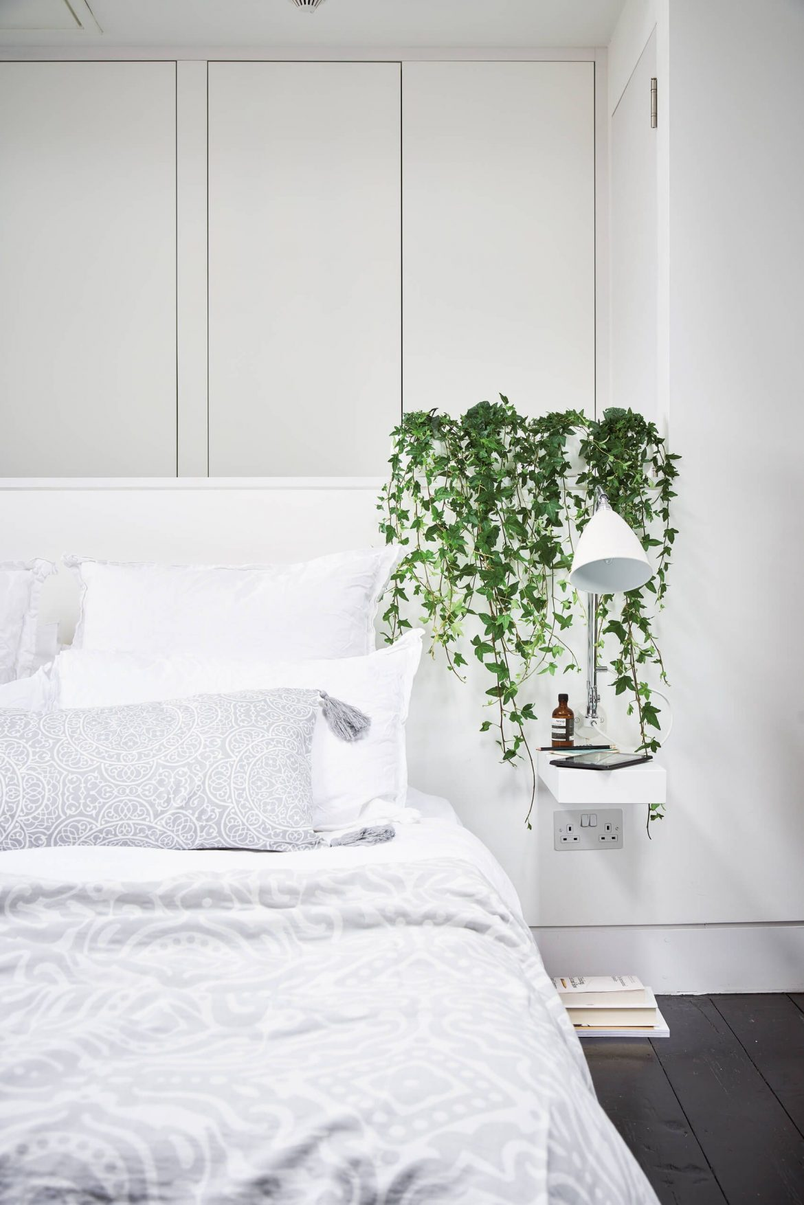 These Are The Best Bedroom Plants to Help You Get a Better Sleep 2