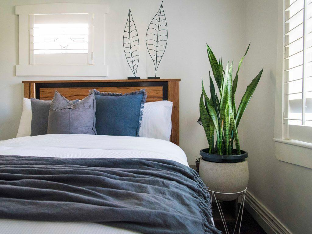 These Are The Best Bedroom Plants To Help You Get A Better Sleep Bedroom Ideas